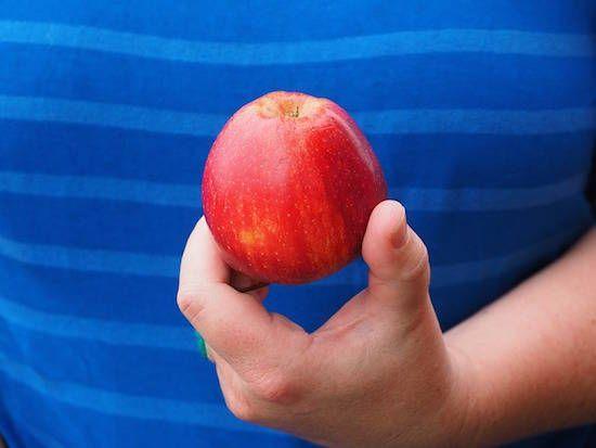 Manger 1 Pomme Après le Repas : Pourquoi Vous Devez