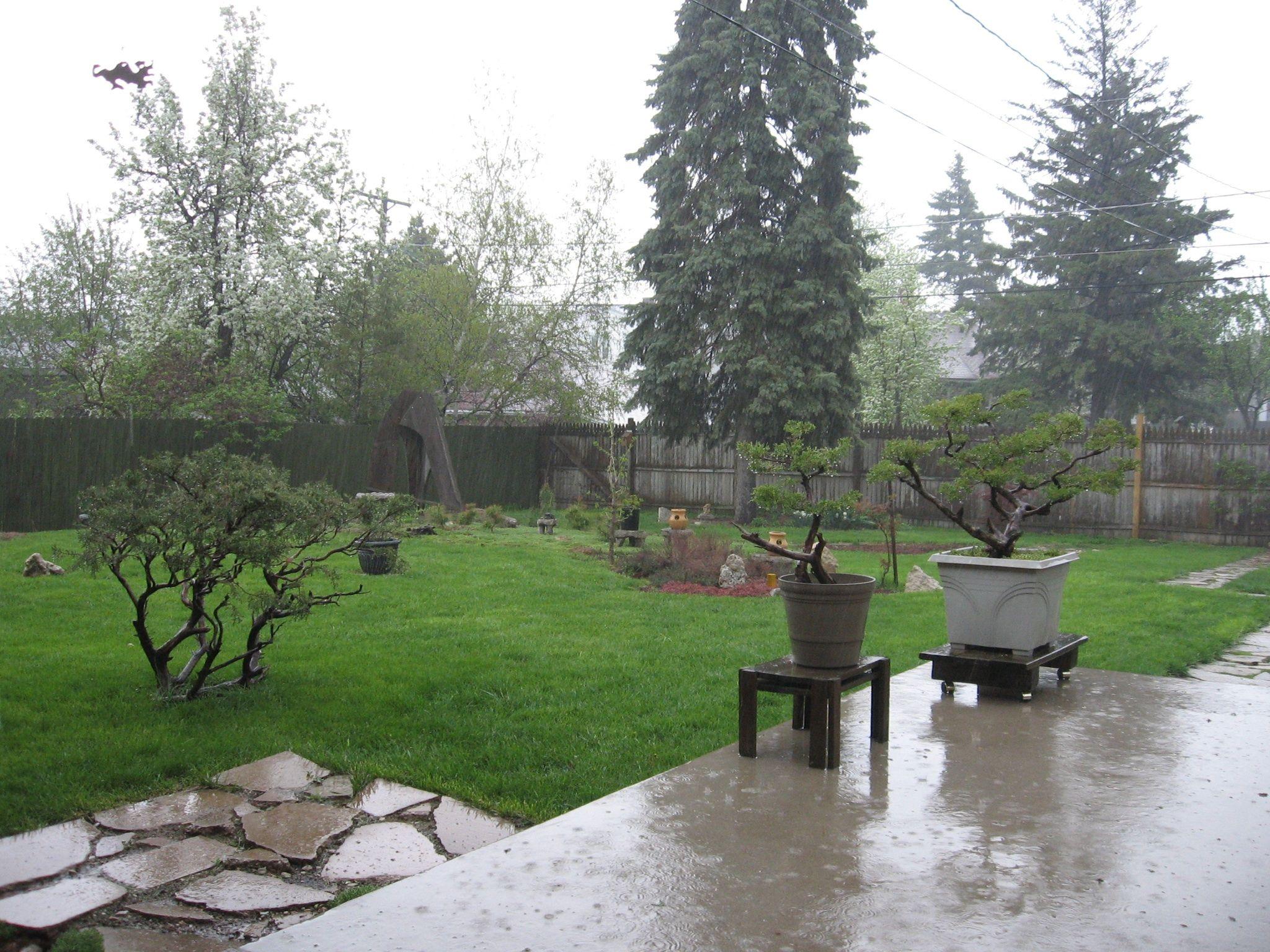 Wet Garden | Backyard, Outdoor decor on Landscaping Ideas For Wet Backyard id=33932