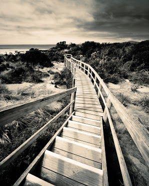 """The Neck"", Bruny Isalnd, Tasmania. #SeeAustralia @Australia ..."