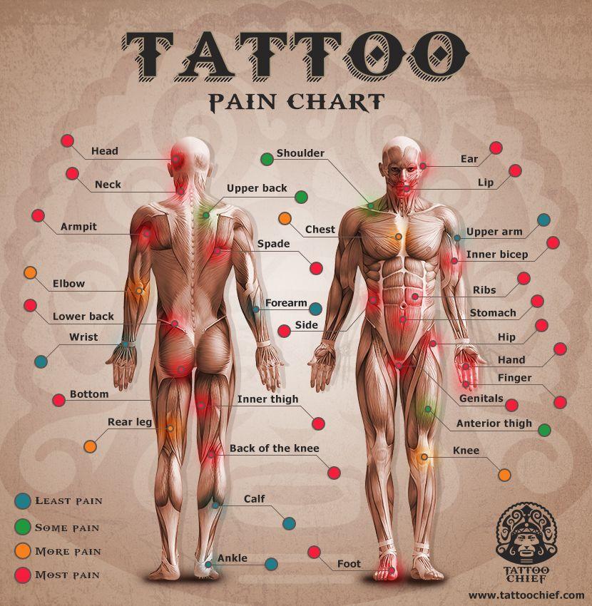 degré de douleur | tattoos | pinterest | tatouage, idee tattoo et