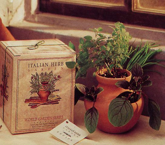 Indoor Gardening Gifts Italian herb garden gift set includes seeds terracotta pot soil italian herb garden gift set includes seeds terracotta pot soil workwithnaturefo