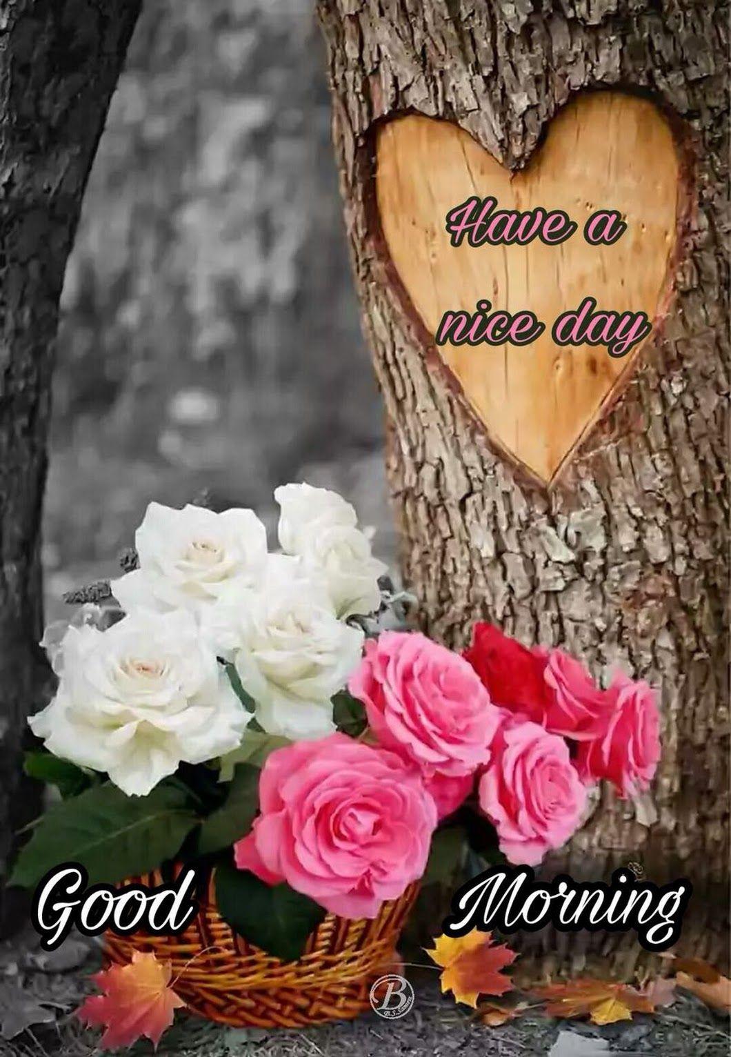 Good Morning Friends Have A Nice Day Balvinder Singh Samra