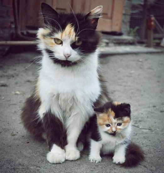 Just like my mama!