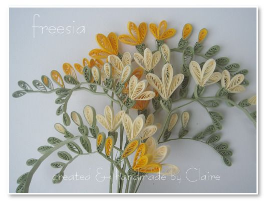 Quilled freesia by Claire