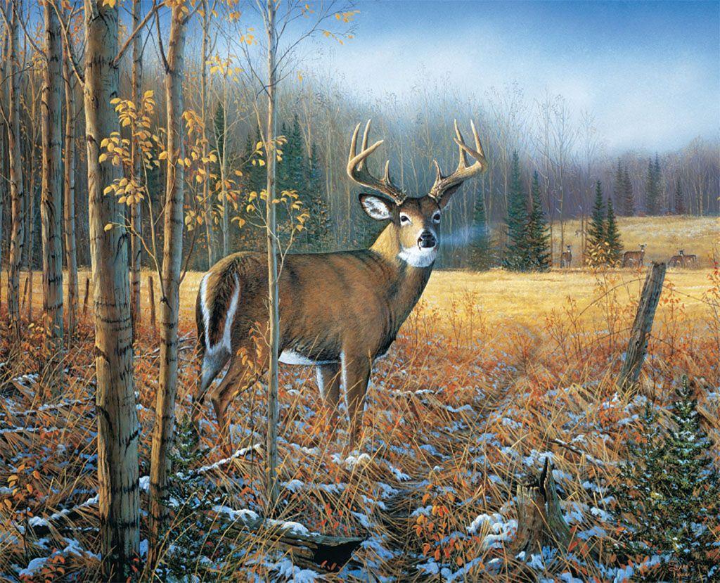 Lang Desktop Wallpaper November 2015 Meadowland Art Backgrounds