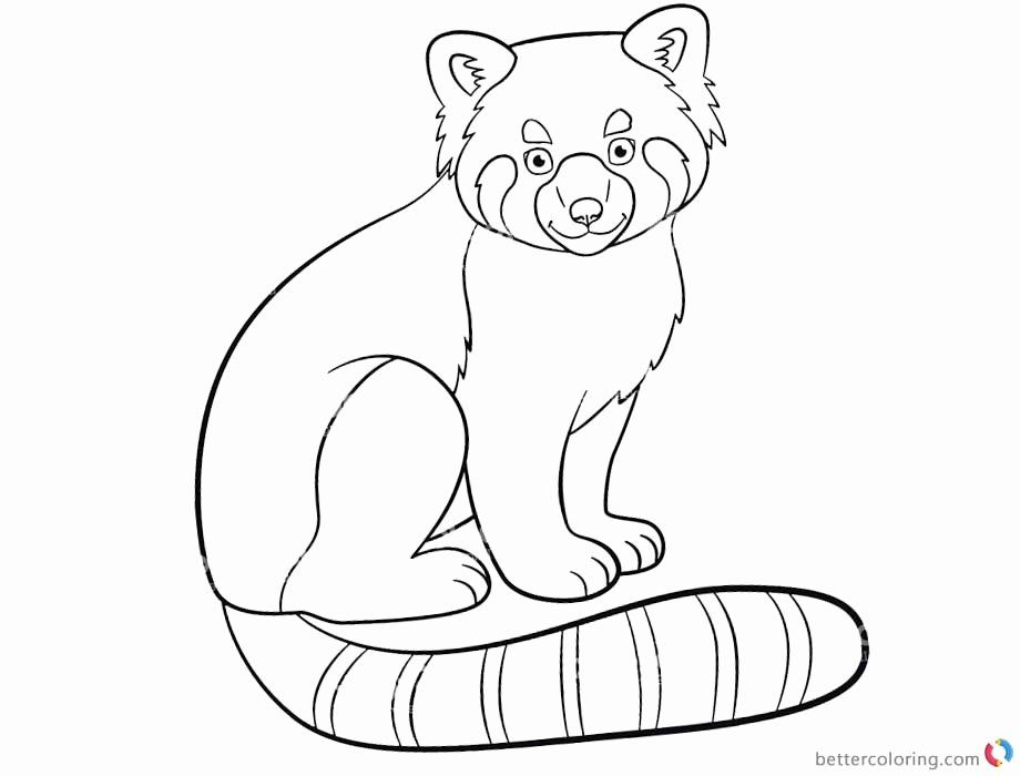 Red Panda Coloring Page Elegant Cute Red Panda Coloring Pages Free Printable Coloring Pages Panda Coloring Pages Unicorn Coloring Pages Puppy Coloring Pages