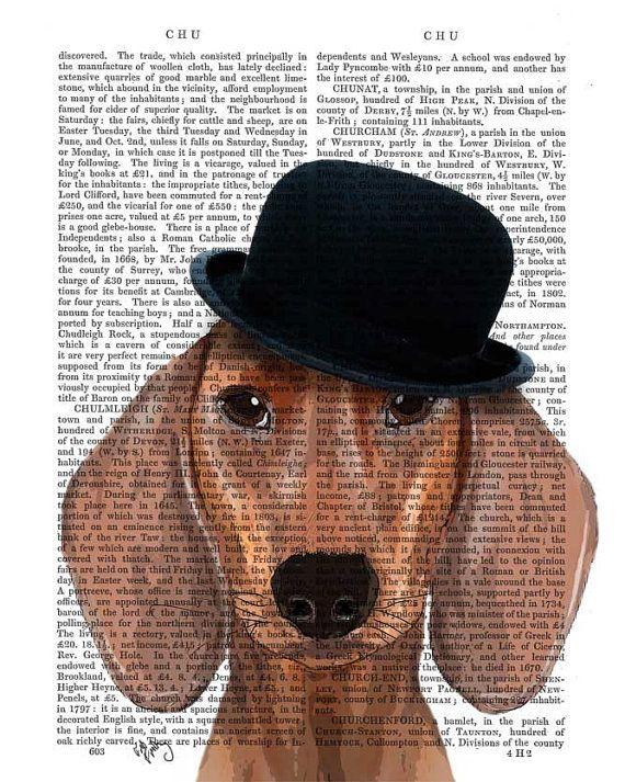 Dachshund Print And Black Bowler Hat Wiener Dog Art Wiener Dog