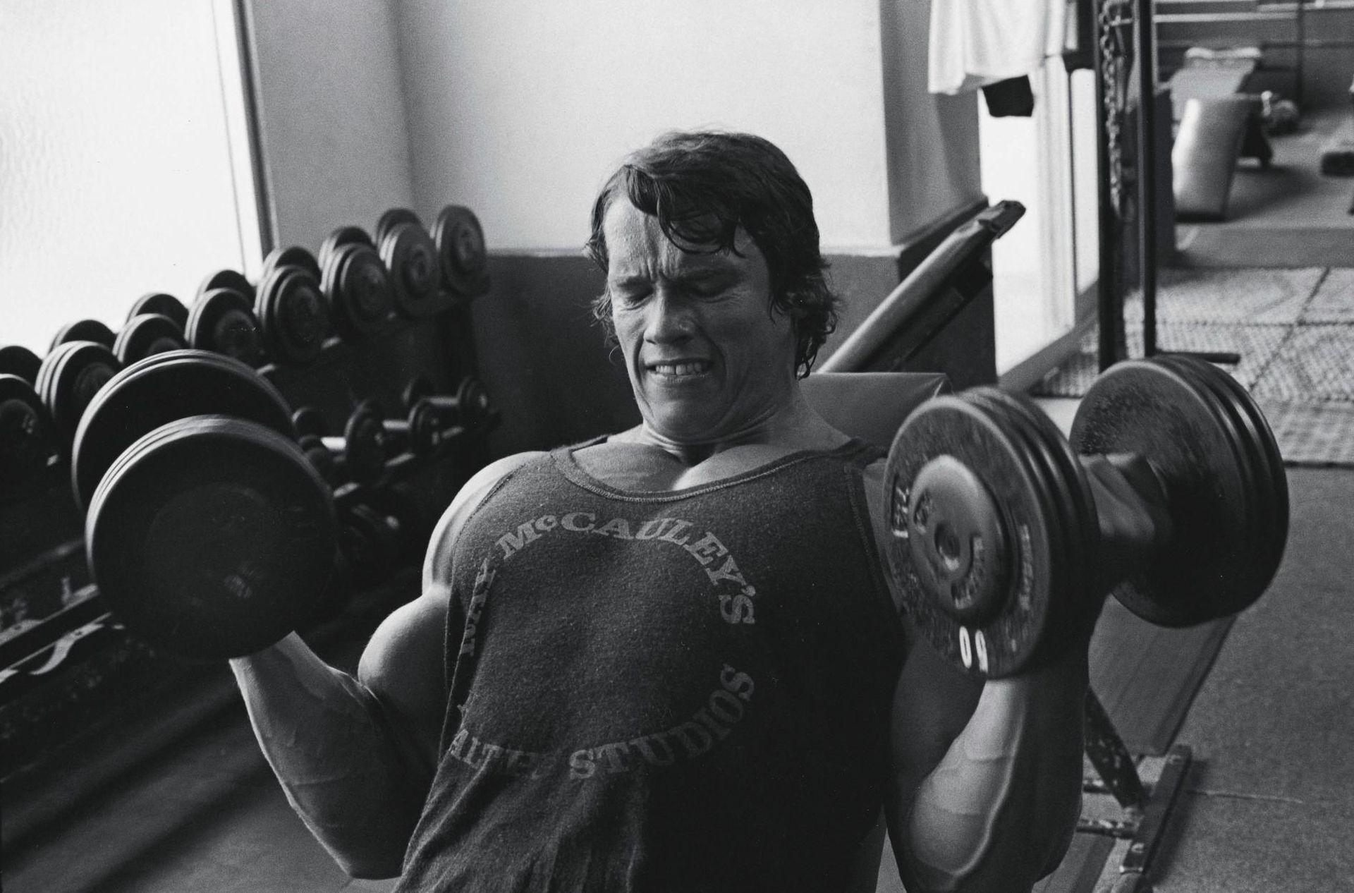 Arms Workout Biceps Schwarzenegger Bodybuilding Arnold Schwarzenegger Bodybuilding Arnold Schwarzenegger