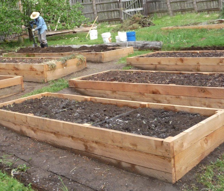 Raised Beds Preparing Your Garden Beds For Spring Building A