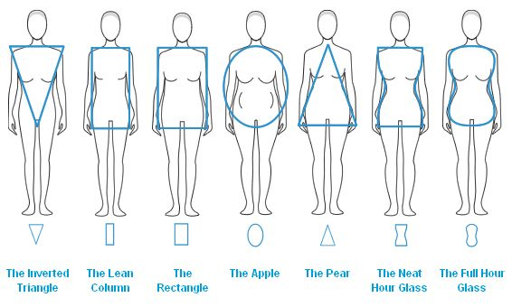 body type chart olalapropxco