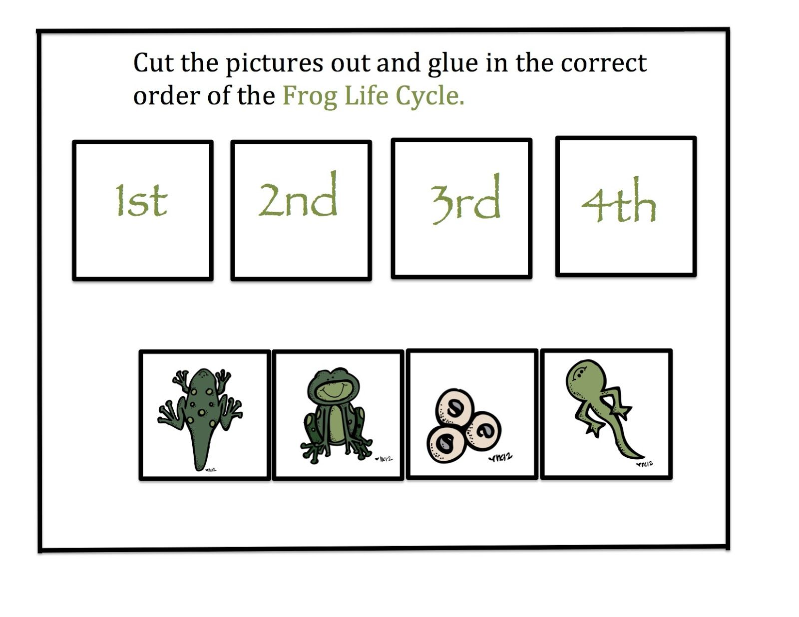 Preschool Printables: Frog Life Cycle | Pond Theme ...