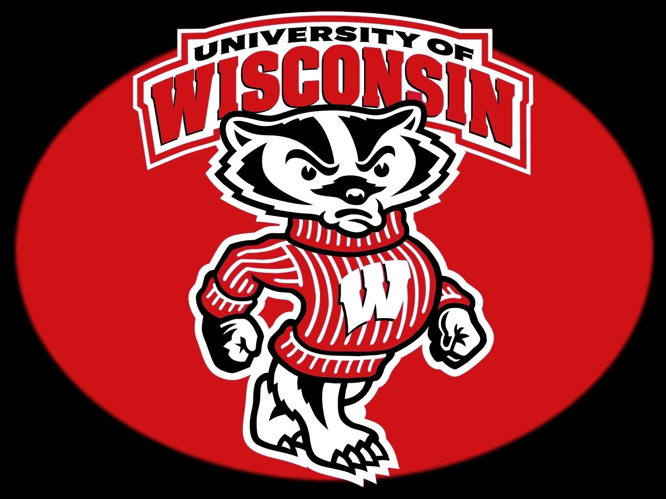 Image result for wisconsin badgers