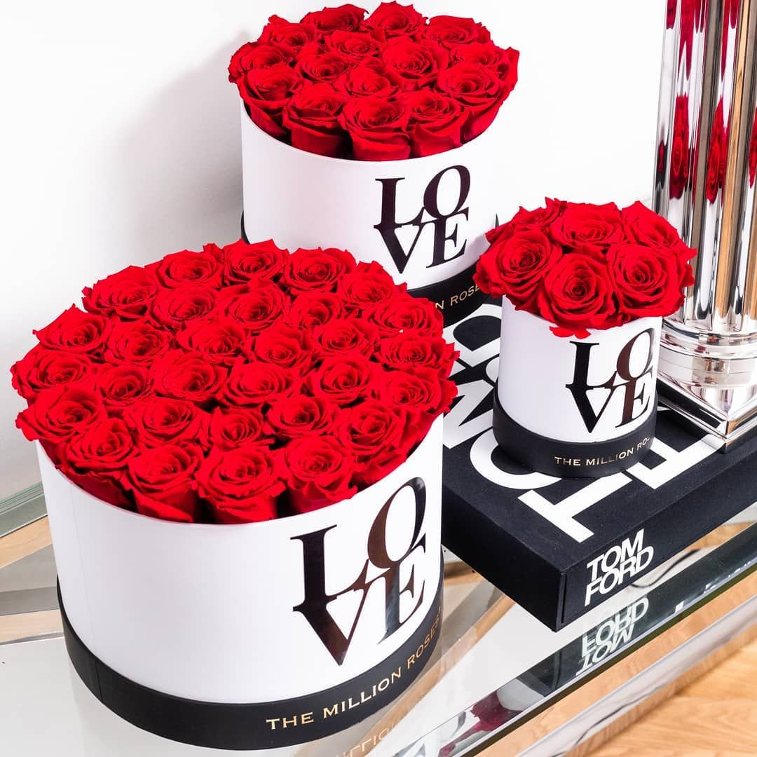 Pin by Papu on Beautiful flowers in 2020 Million roses
