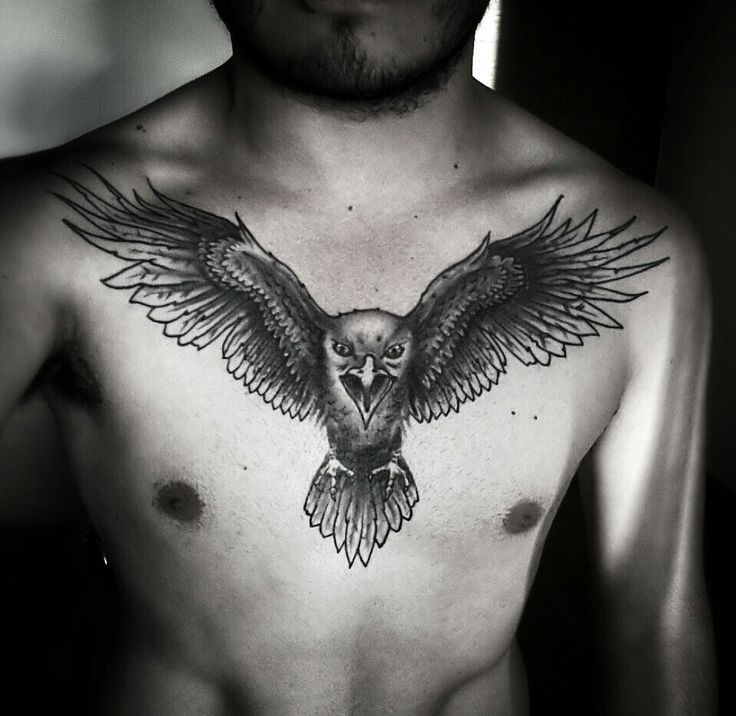 39 Awesome Eagle Chest Tattoos For Men Images Chest Tattoo Men Chest Tattoo Eagle Chest Tattoo