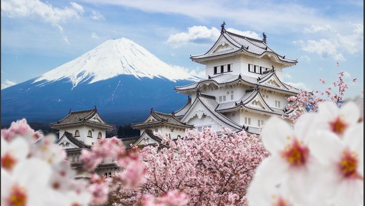 Quiz: Do You Know These 5-Letter Words? Level 1 in 2020   Day trips from  tokyo, Japan travel, Cool places to visit