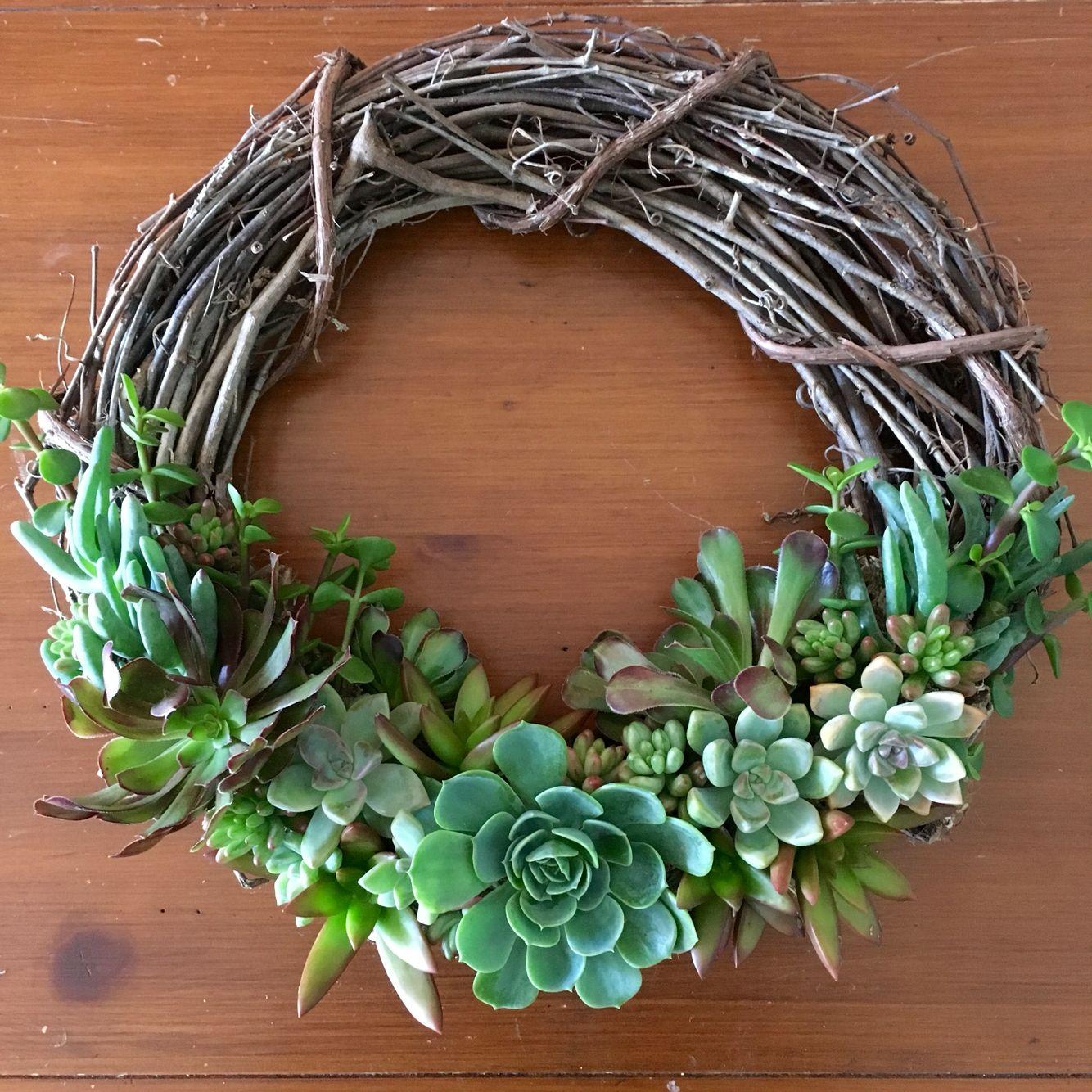 Succulents on grapevine wreath.