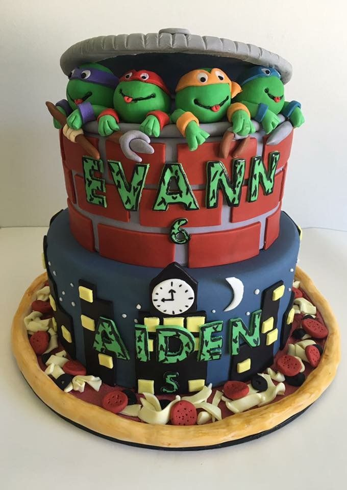 Teenage Mutant Ninja Turtle Cake For Twin Boys Kids
