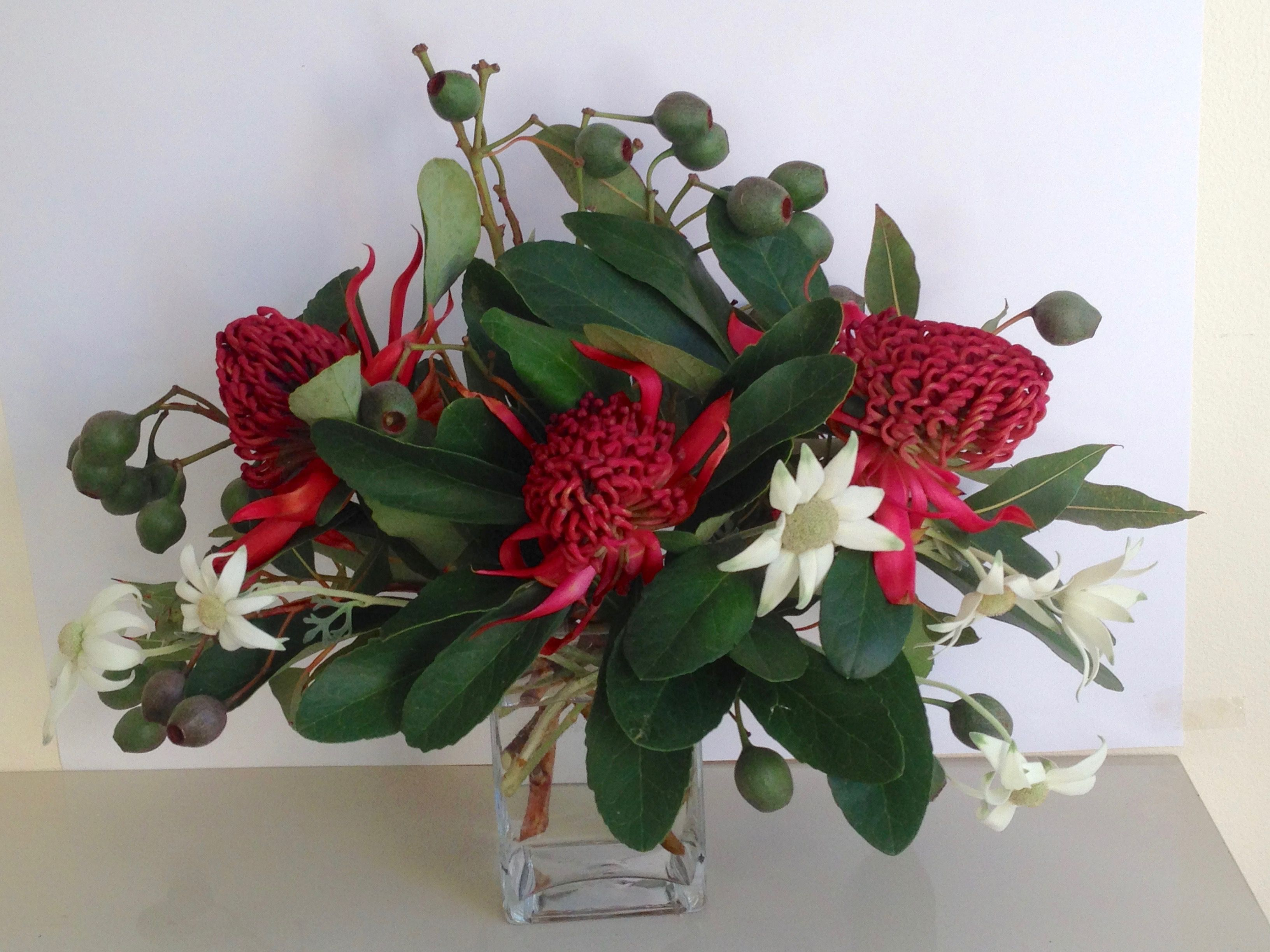 Australian native flowers, Waratah, Flannel Flower