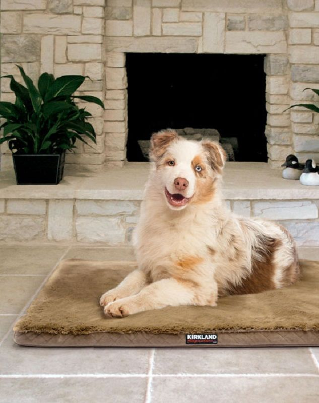 your pet will love lounging on the new kirkland signature mulipurpose pet mat they will