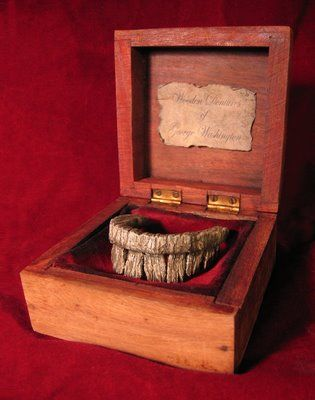 George Washingtons Wooden Dentures My Prop Cabinet Of Curiosities