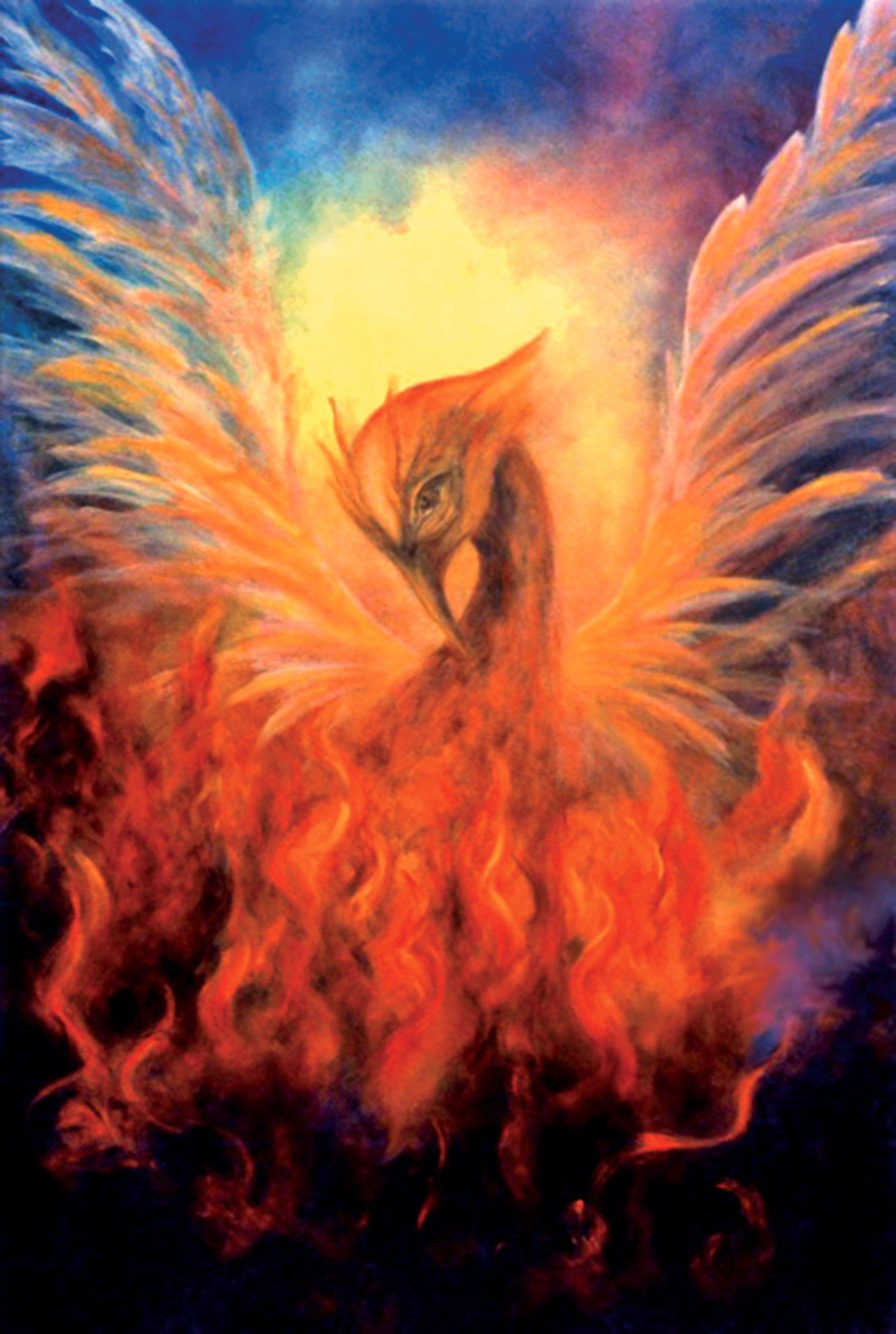 O nascimento da Fênix ❤ :3