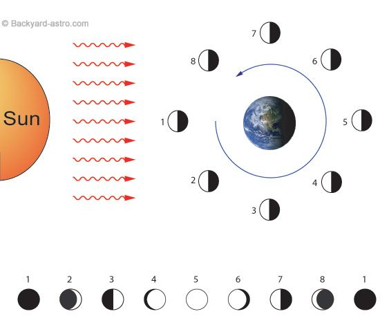 simple diagram of moon phases the sun and the moon rh pinterest com moon phases diagram to label moon phases diagram blank