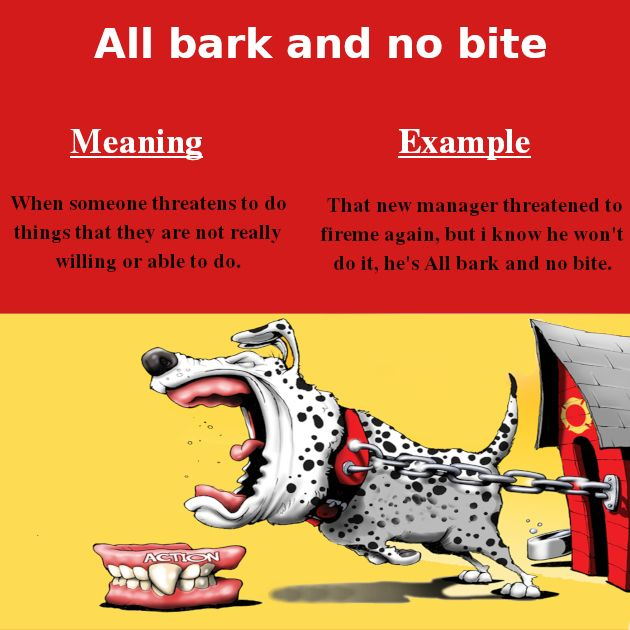 all bark and no bite idiom meaning