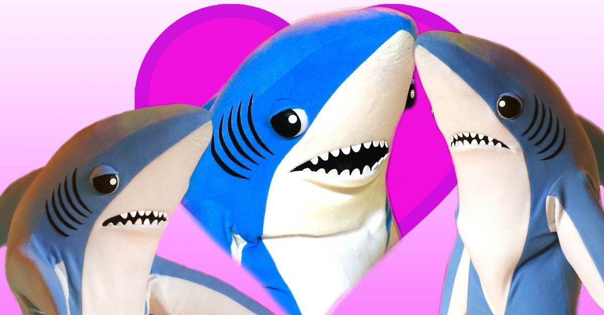 5 Valentine S Day Cards For The Left Shark In Your Life Lol
