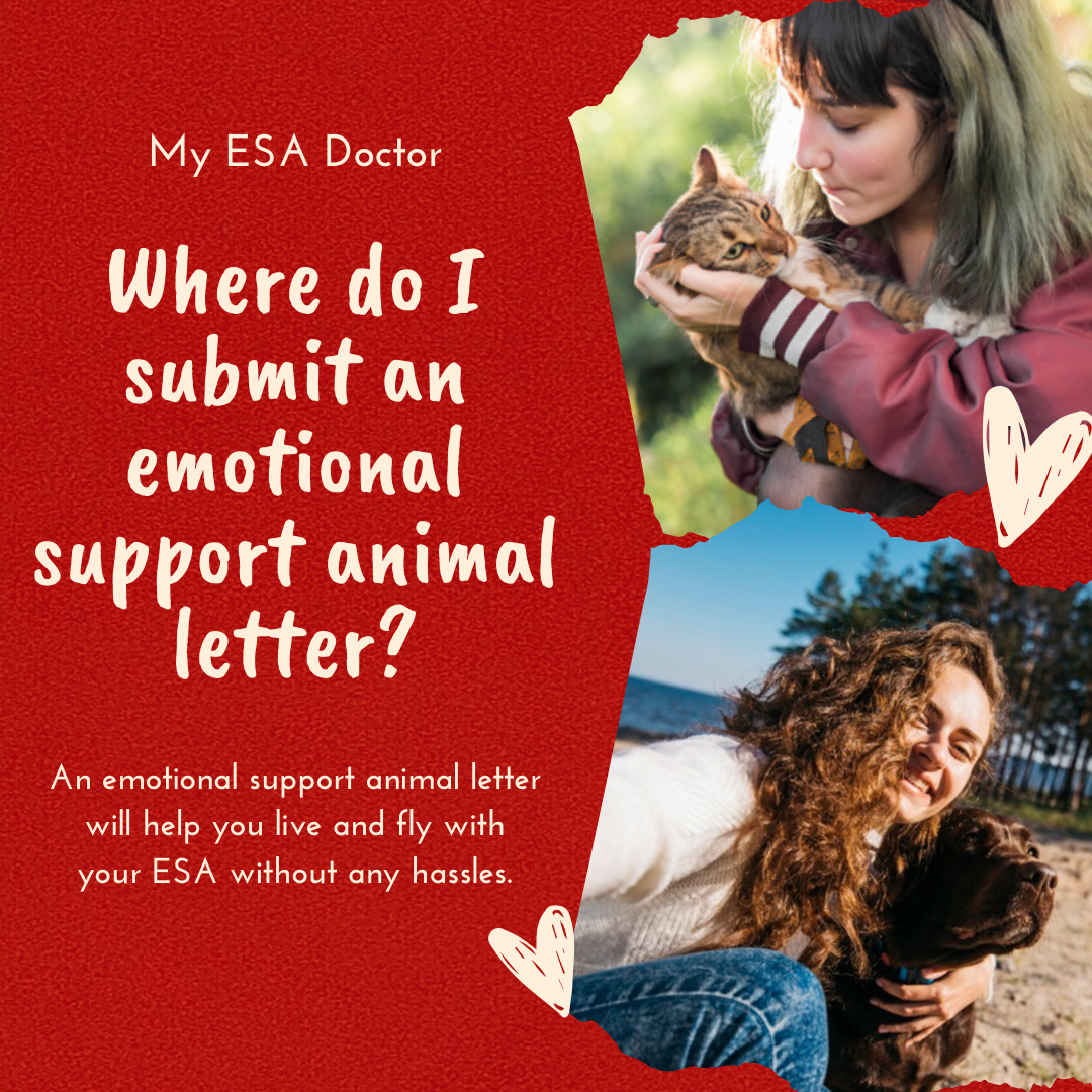 You don't have to submit your emotional support animal