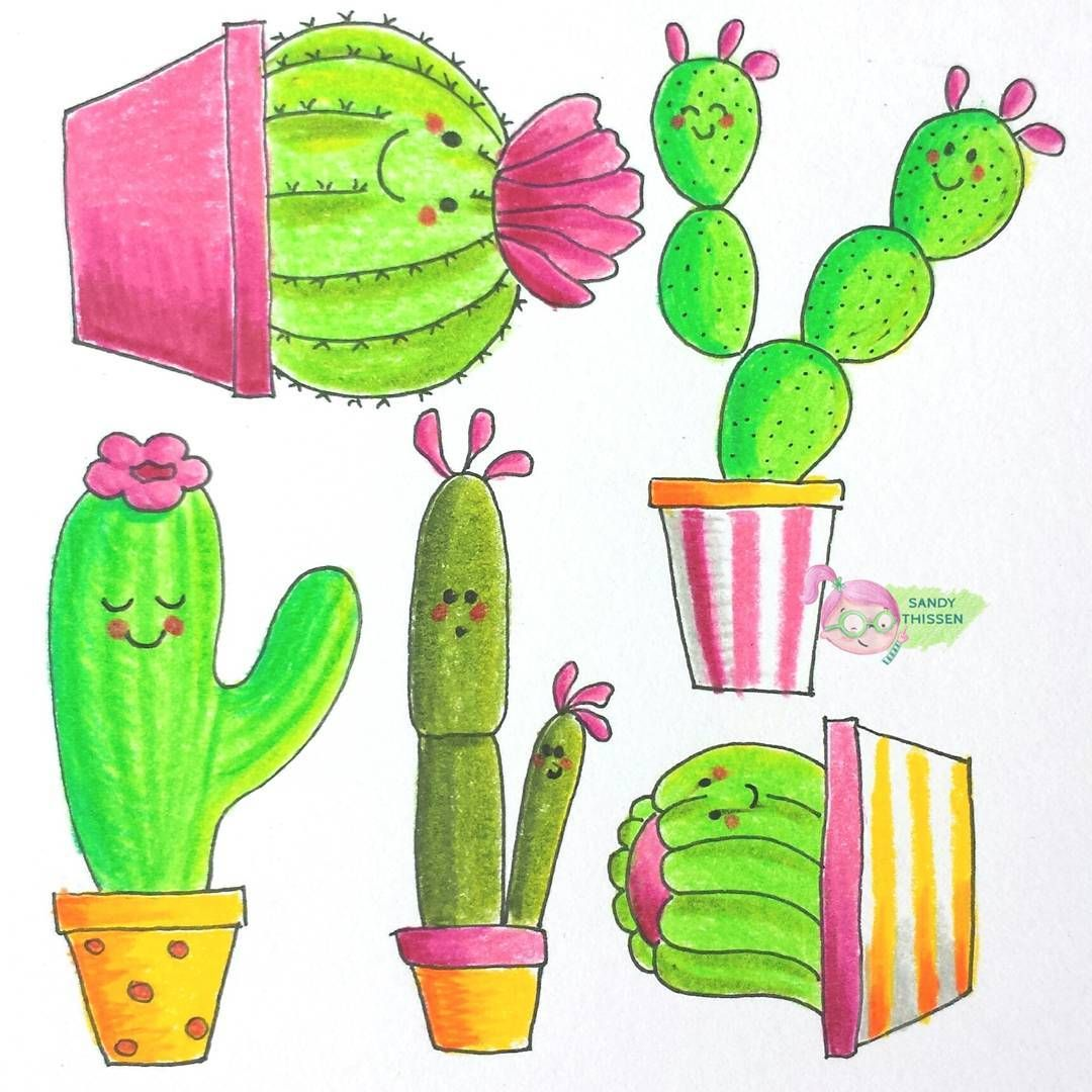 kaktus kakteen zeichnung sandy thißen  kaktus bilder
