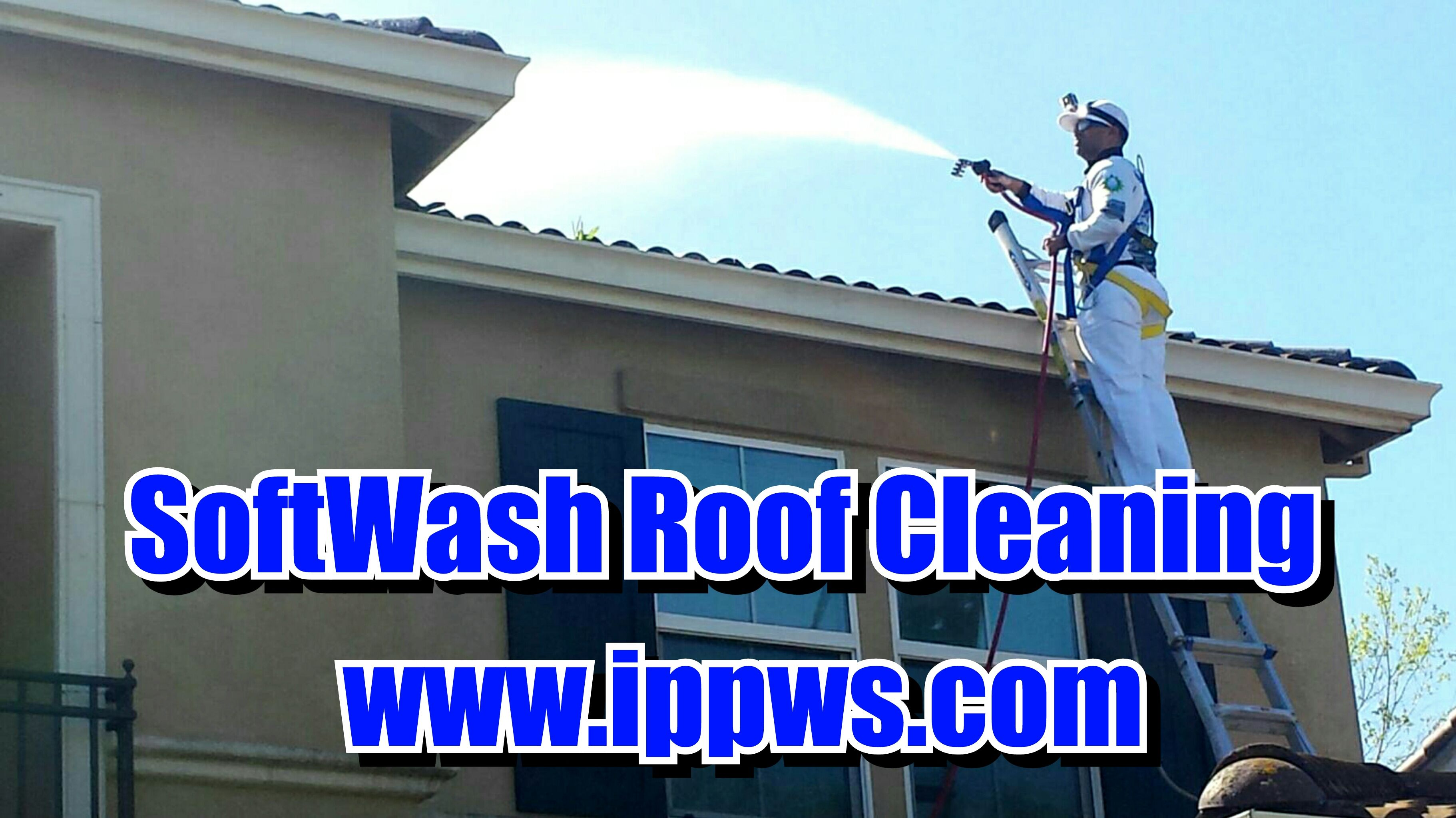 Softwash Roof Cleaning Service San Jose Ca Roof Cleaning Cleaning Service Roof