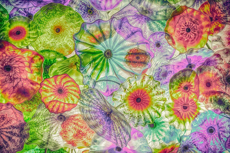 Dreamer fiori di como chihuly print 6 sizes 1000 via