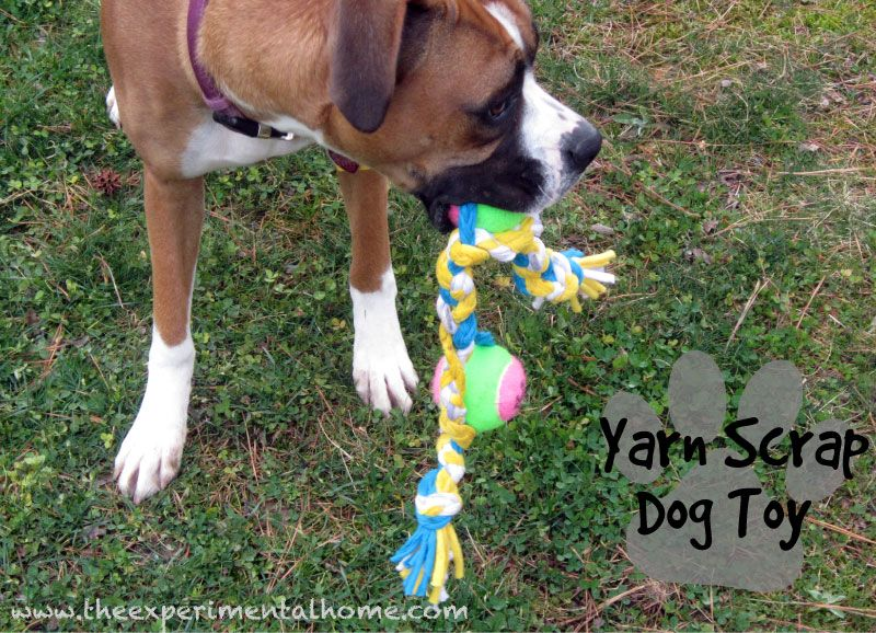 Diy Yarn Scrap Dog Toy From Old T Shirts And Tennis Balls Dog