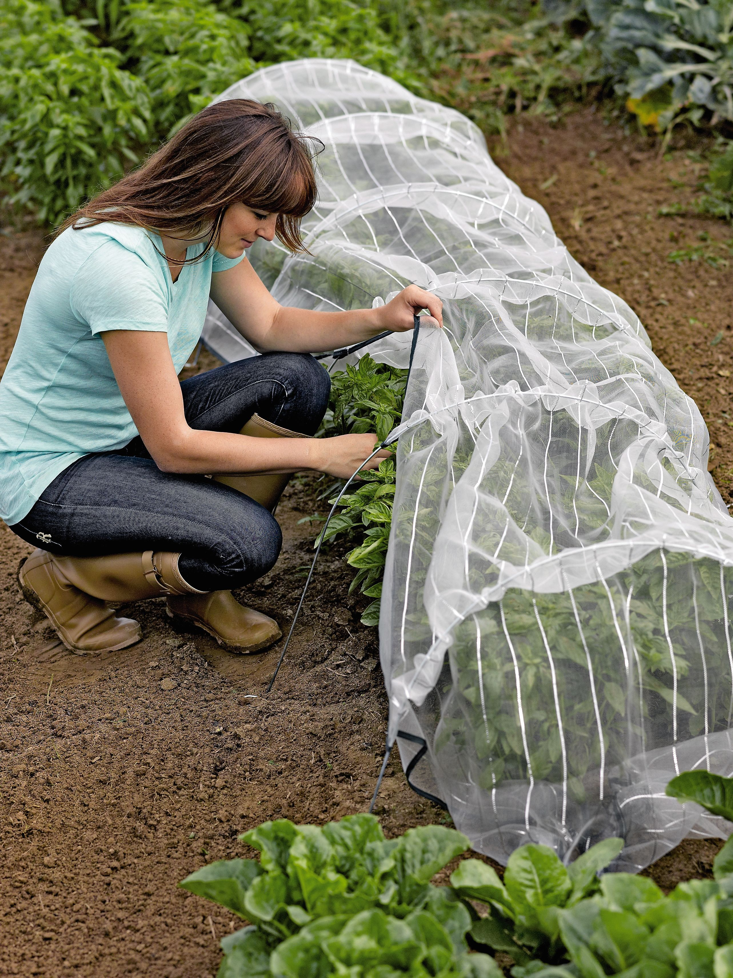 Insect Netting With Hoops For Pest Control Tunnel Fine Mesh