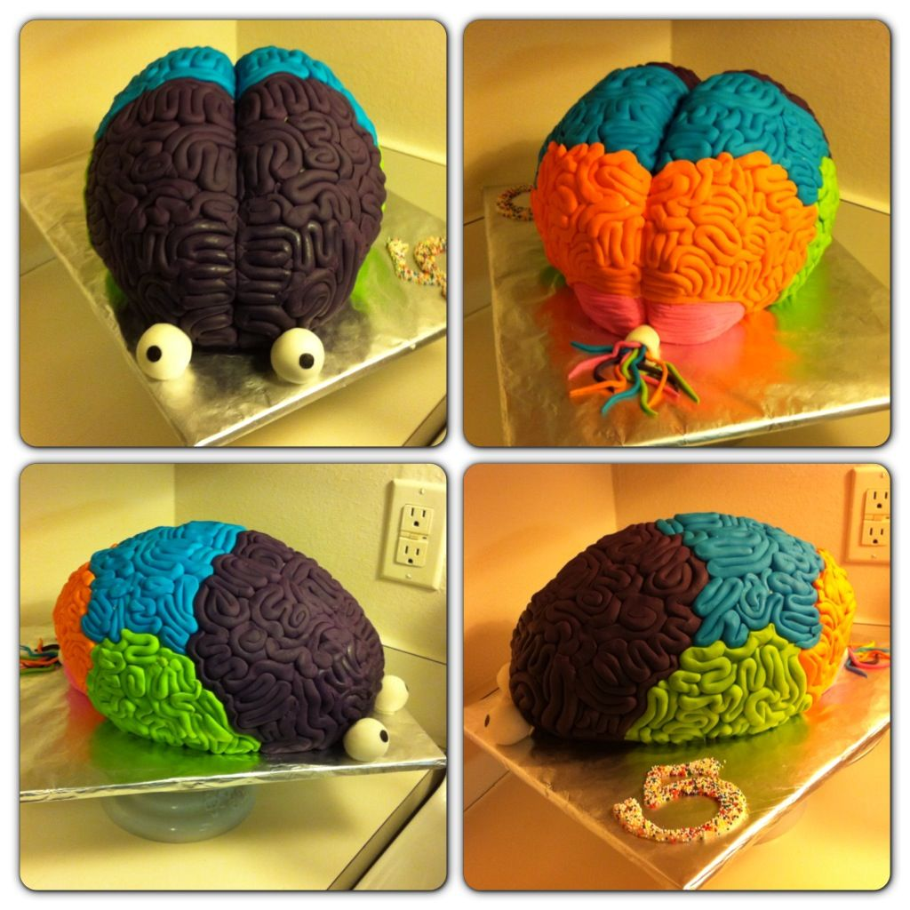 Anatomical Brain cake, brain cake, science party ...