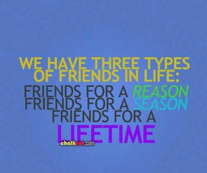 Serious Quotes On Friendship: Seasonal Friendships.