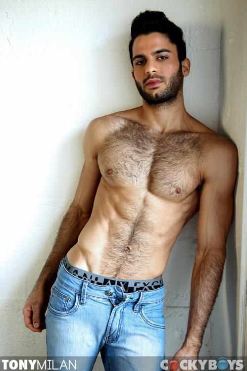 Gay hairy brazilian men
