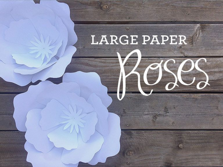 How To Make Giant Paper Roses Paper Roses Free Paper Flower