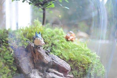 Terrarium & Timmy: Custom Totoro totoro totoro TERRARIUM FROM ETSY