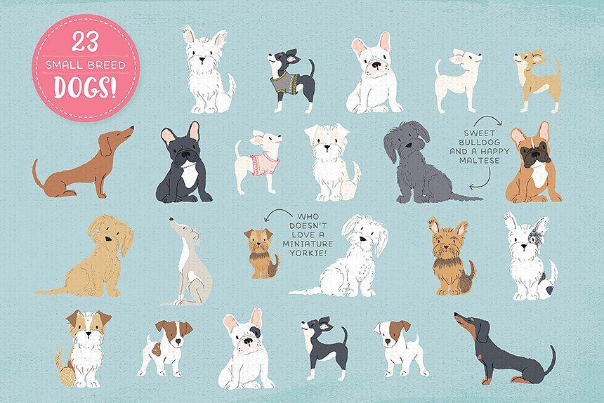 Cats Dog Breeds Horses 165 Pets Dog Breeds Pets Cute Horses