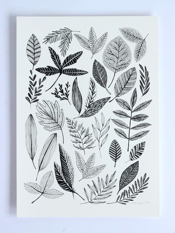 Hand Pulled Black Botanical Study Screen Print- Hannah Rampley