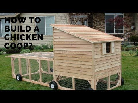 How to Build a Chicken Coop Build a Chicken Coop Plan for 10 Chickens Chicken Coop for Backyard