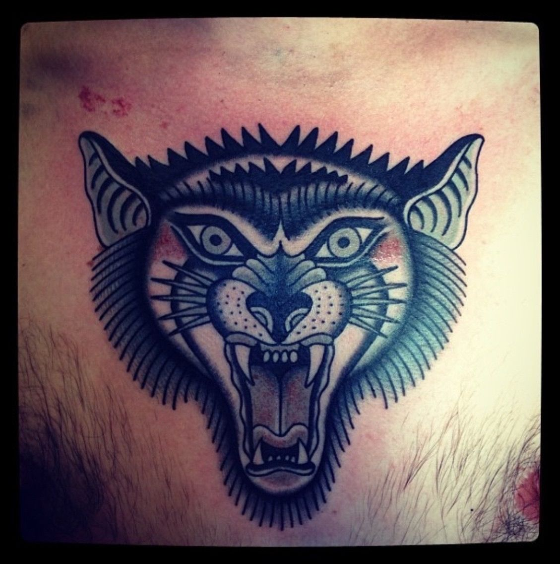 traditional wolf chest tattoo Google Search (With images