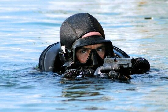 One of our many Navy seals.
