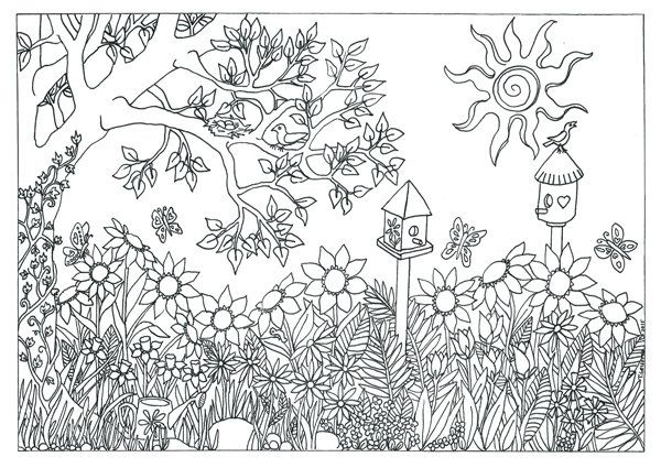 Garden Nature Scene Coloring Page Coloring For Adults By