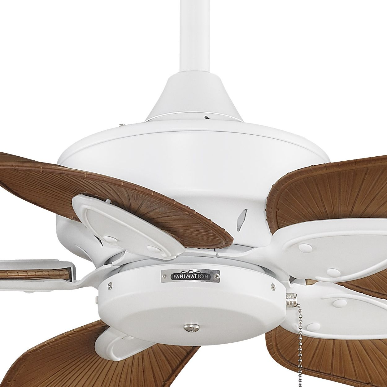 Shop fanimation ma7500 windpointe fivebladed motor assembly shop fanimation ma7500 windpointe fivebladed motor assembly ceiling fan at lowes canada find our selection mozeypictures Gallery