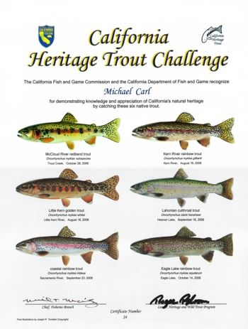 California heritage trout challenge certificate fish for Freshwater fishing in southern california