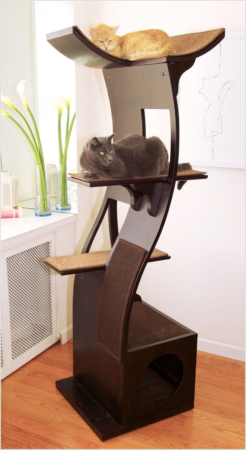 Superb A Cat Tree With A Modern Curved Design