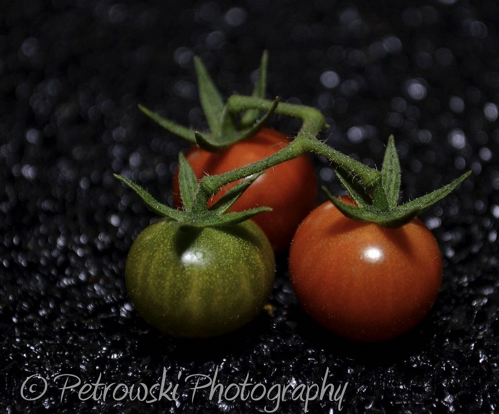 Tomatoes On The Outdoorphoto Galleries By Member Petrowski Photography Sebzeler