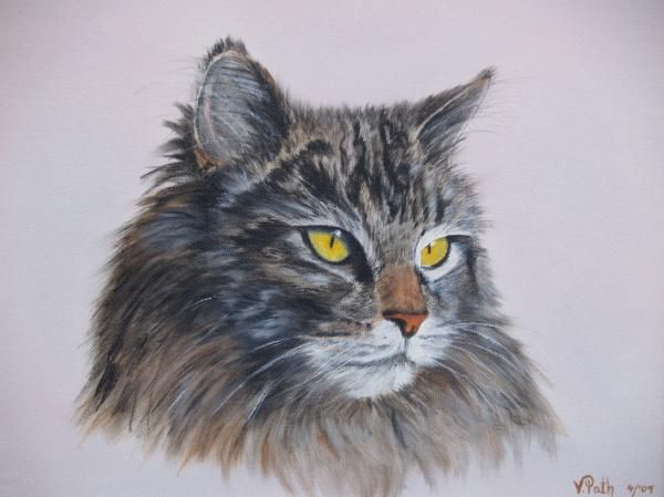 Maine Coon Cat....now that is my Vega!  And Vicky Path painted her!!! Awesome!!!